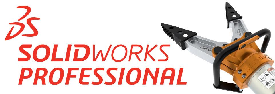 Professional SolidWorks Version